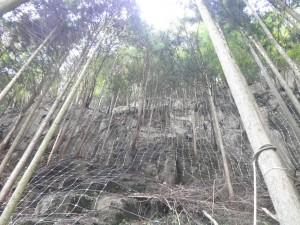 名張曽爾線完成写真